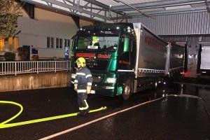Feuerwehrübung SKF (4)